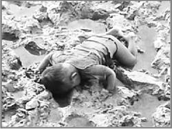 নাফ নদে বর্মী সীমান্তরক্ষী বাহিনীর গুলিতে নিহত রোহিঙ্গা শিশু তোহাইতের ভেসে আসা দেহ